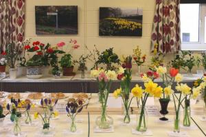Corfe Flower Show 2018
